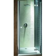 Душевая дверь Radaway Almatea DWJ 100 31202-01-05N