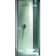 Душевая дверь Radaway Almatea DWJ 110 31212-01-01N