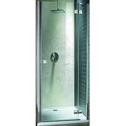 Душевая дверь Radaway Almatea DWJ 110 31212-01-05N