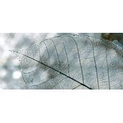 Плитка Интеркерама Magia Серый Д 61 071 Декор